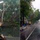 Hujan Deras, Pohon Tumbang Terjang PJU, Mobil, Tower dan Atap Kantor Desa